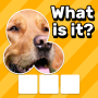 icon Zoom Quiz: Close Up Picture Game, Guess the Word