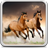 icon Horses Live Wallpaper 18.0