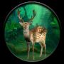 icon Wild Animals: Jungle Hunter 3D