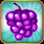 icon Fruit Blitz Free