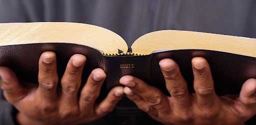Ndebele Bible - New & Old Testament