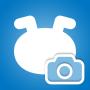 icon 表紙になれる いぬのきもちカメラ