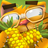 icon Cats Empire 3.7.5