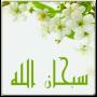 icon Flowers Islamic Livewallpaper