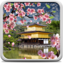 icon Sakura Garden Live Wallpaper