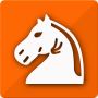 icon Follow Chess