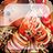 icon Mehndi Designs Pro 4.5.0