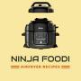 icon Ninja Foodi Airfryer
