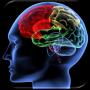 icon Shuffle 'n Slide Brain Game