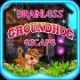 icon Brainless Groundhog Escape - JRK Games