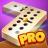 icon Dominoes 8.10