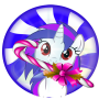 icon Adventure candy world of pony