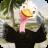 icon Talking Ostrich 1.3.5