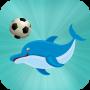 icon Dolphin Football Show
