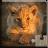 icon Cute Animals Puzzle 27.0