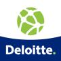 icon Internal Deloitte SAP