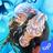 icon Eldarya 1.0.5