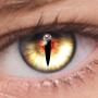 icon FoxEyes - Change Eye Color