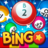 icon Bingo Pop 4.0.50