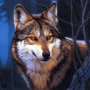 icon Wolf Jigsaw Puzzles