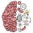 icon Brain Test 2.632