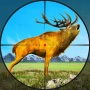 icon Deer Hunting Wild Animal Shooting Games 2021