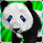 icon Animal world for kids