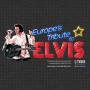 icon Europe's Tribute To Elvis 2017