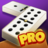 icon Dominoes 6.7
