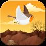 icon Lovely Bird