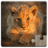 icon Cute Animals Puzzle 21.1
