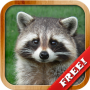 icon Animals for Kids - Flashcards