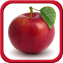 icon Fruits and Vegetables for Kids