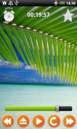 Tropical Sounds - Nature Sound