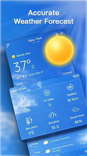 Live Weather Forecast: Accurate Weather