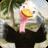 icon Talking Ostrich 1.3.2
