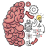 icon Brain Test 2.719