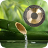 icon Water & Gong 5.0.0
