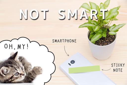 Cat Sticky Notes Notepad