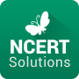 icon NCERT Solutions of NCERT Books