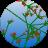 icon SmallBASIC 12.21