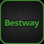 icon Bestway