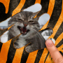 icon Scratch and guess the animal