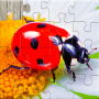 icon Insect Games Jigsaw Puzzles