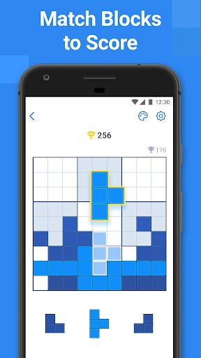 BlockuDoku - Block Puzzle Game