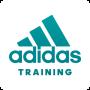 icon Training