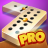 icon Dominoes 8.18