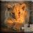 icon Cute Animals Puzzle 21.5