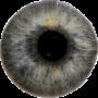 icon Eye Diagnosis