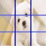 icon Dog Puzzle 2016